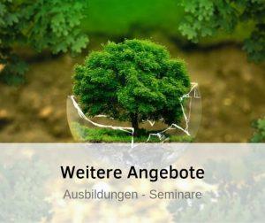 Ausbildungen weitwerbildungen und Seminare für Hochsensible