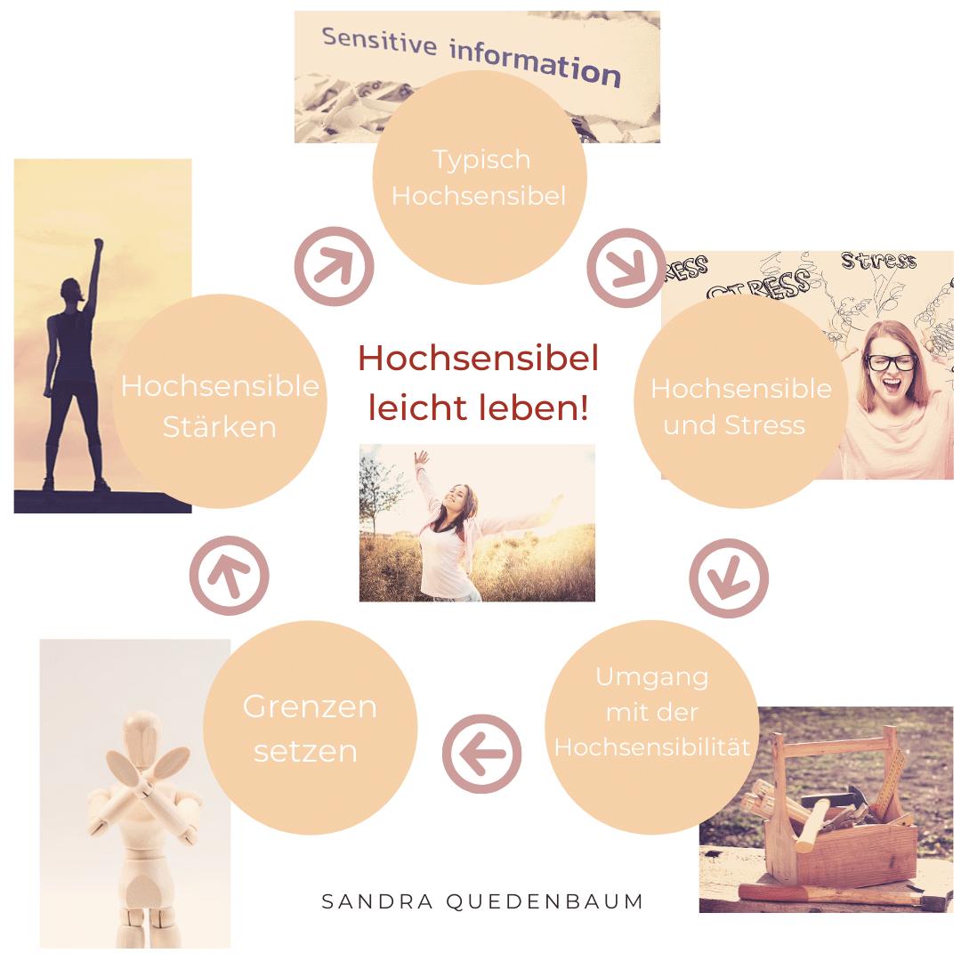 Kopie von Kopie von Booster Charts and Infographics - Hochsensibilität und Trauma – Coaching, Seminare, Ausbildung und WeiterentwicklungWeiterentwicklung. -