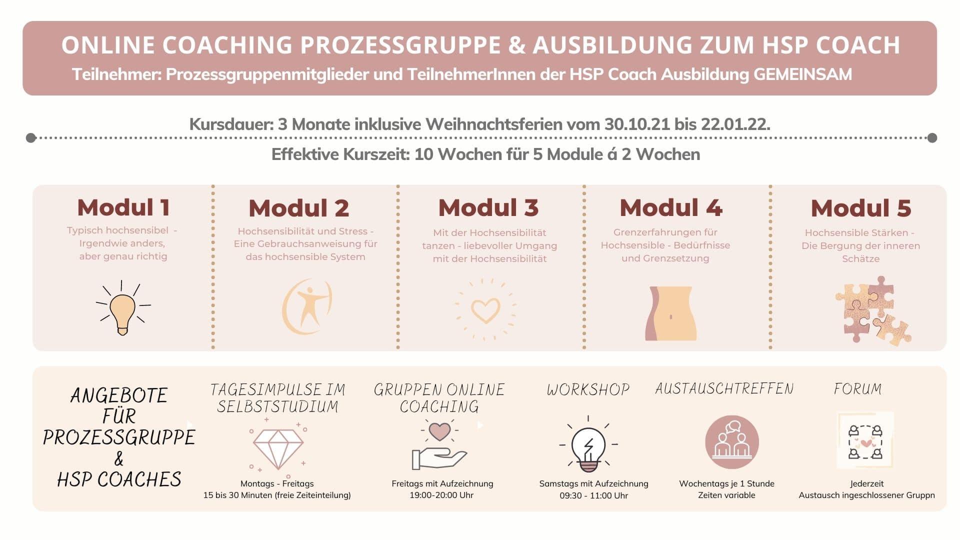 Online Coaching Prozessgruppe HSP Coach Uebersichtschart - Hochsensibilität und Trauma – Coaching, Seminare, Ausbildung und WeiterentwicklungWeiterentwicklung. -